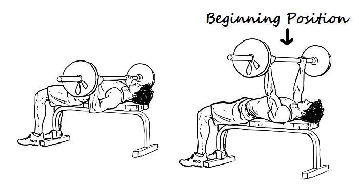 beginning position of barbell bench press
