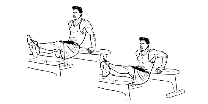 exact bench dips workout