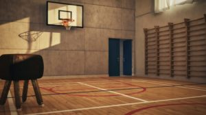 Indoor Basketball Goal